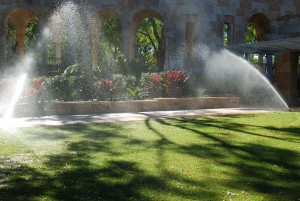 Landscape-Irrigation-Custom-Services-of-Collier